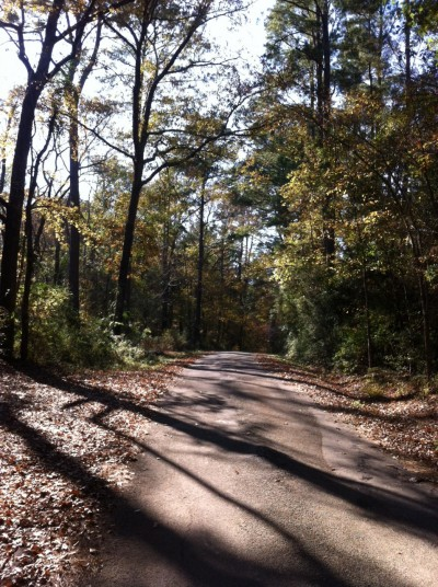 My East Texas walking trail